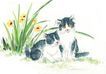 猫专辑0050,猫专辑,中国国画,