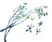 百态昆虫0010,百态昆虫,中国国画,采摘 种类 勤劳 点彩 画笔