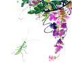 百态昆虫0034,百态昆虫,中国国画,花枝 野外 国画