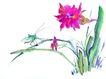百态昆虫0040,百态昆虫,中国国画,国画 害虫 生态