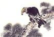 飞禽走兽0012,飞禽走兽,中国国画,松枝 低头 弯嘴