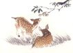 飞禽走兽0021,飞禽走兽,中国国画,麋鹿 树叶 草地