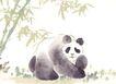 飞禽走兽0025,飞禽走兽,中国国画,熊猫 竹子 可爱