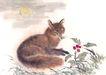 飞禽走兽0037,飞禽走兽,中国国画,红果 果子 特征