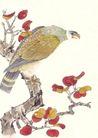 飞禽走兽0038,飞禽走兽,中国国画,静立 树杆 红枫