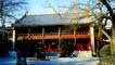 北京名胜0074,北京名胜,中国民间艺术,中南海 枯枝 树影