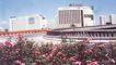 北京名胜0078,北京名胜,中国民间艺术,粉红 花丛 立交桥