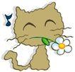 彩绘0090,彩绘,中国民间艺术,猫儿 花朵 搞笑