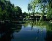 故宫0030,故宫,中国民间艺术,柳树 湖水 石拱桥