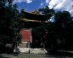 故宫0043,故宫,中国民间艺术,绿树笼罩