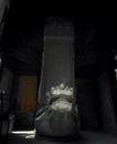 故宫0078,故宫,中国民间艺术,黑门 缘台 兽头