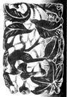 植物图案花纹0359,植物图案花纹,中国民间艺术,