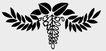 植物图案花纹0396,植物图案花纹,中国民间艺术,