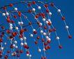 缤纷圣诞0003,缤纷圣诞,中国民间艺术,圆珠 串连 枝节