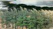 绿色长城图,山水名画,中国现代名画,