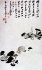 菌,张大千,中国近代大师名画,