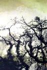 西玛拉雅之三,徐悲鸿,中国近代大师名画,