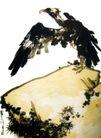 鹫鹰磐石,潘天寿,中国近代大师名画,