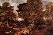风景油画0160,风景油画,国外传世名画,茂密树木