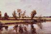 风景油画0173,风景油画,国外传世名画,荒滩 野草丛 矮树