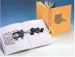 中国书籍装帧设计0205,中国书籍装帧设计,书籍装帧设计,