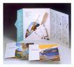 中外书籍装帧设计0166,中外书籍装帧设计,书籍装帧设计,三角翻盖 风景画 说明文字