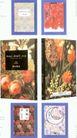 国际书籍装帧设计0216,国际书籍装帧设计,书籍装帧设计,
