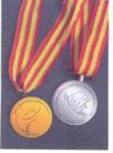 中华人民共和国第六届残疾人运动会-011,学生作品,中国品牌年鉴2004,荣誉 奖章 金牌