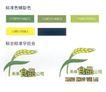 末来食品公司-002,学生作品,中国品牌年鉴2004,学生作品 食品 谷子 未来食品公司