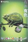 信息通讯用品0003,信息通讯用品,中国广告作品年鉴2004,青蛙 树枝 绿色