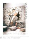 公益0011,公益,中国广告作品年鉴2004,非典 药店 吃壁虎