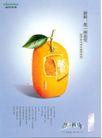 家电及关联品0012,家电及关联品,中国广告作品年鉴2004,水果 新鲜 海信