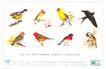 房地产及关联品0022,房地产及关联品,中国广告作品年鉴2004,燕子 画眉 猫头鹰 鸟类