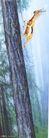汽车及关联品0002,汽车及关联品,中国广告作品年鉴2004,动物 大树 树林