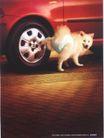 汽车及关联品0008,汽车及关联品,中国广告作品年鉴2004,红色车 轮子 小狗