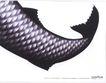 汽车及关联品0033,汽车及关联品,中国广告作品年鉴2004,鱼尾 鱼鳞 一路领先