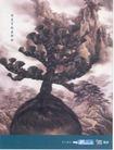 美容卫生用品0003,美容卫生用品,中国广告作品年鉴2004,辩子树 持久滋润 古画