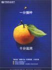 金融保险0015,金融保险,中国广告作品年鉴2004,桔子 叶子 投资理财