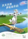 食品0002,食品,中国广告作品年鉴2004,牧场 小河 牛奶