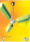 食品0014,食品,中国广告作品年鉴2004,清凉 扇子 冰棒