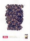 食品0020,食品,中国广告作品年鉴2004,蜂蜜 昆虫 一堆蜜蜂
