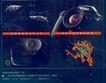 手机眼睛照相机广告创意0096,手机眼睛照相机广告创意,国际知名品牌广告创意,广告设计 产品