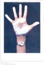 珠宝手表广告创意0098,珠宝手表广告创意,国际知名品牌广告创意,手掌 名表