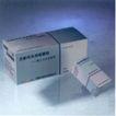 田茹微作品001,设计师作品一,广东设计年鉴2004,