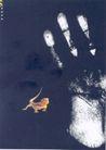 邓方冰作品002,设计师作品一,广东设计年鉴2004,