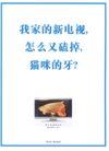 平面获奖作品一0048,平面获奖作品一,11届中国广告节获奖作品,真实 现实 显示
