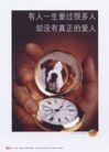 平面获奖作品二0099,平面获奖作品二,11届中国广告节获奖作品,
