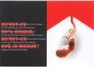 奎内克作品集0095,奎内克作品集,世界设计名家,胚胎