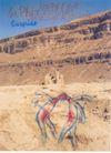 孔乔作品集0025,孔乔作品集,世界设计名家,泥土 黄土地 泥石流