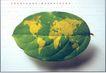 白同异作品集0099,白同异作品集,世界设计名家,树叶 地图